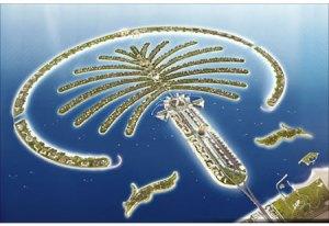 ilha da palmeira